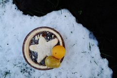 Mince pie with marzipan fruits left in snow Royalty Free Stock Photo