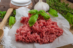 Minced beef raw Stock Photography