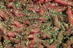 Minced meat and Provencal herbs. Minced fresh meat and Provencal herbs stock photography