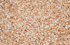 Minced Garlic for use as background Royalty Free Stock Image