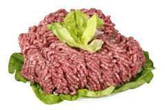 Minced meat. Raw minced meat with salad leaves Stock Photos