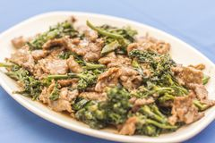 Minced meat with broccoli in blue background royalty free stock photography