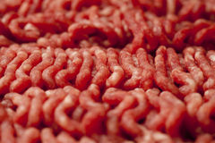 Minced Meat Close-Up. Close Up of Raw Minced Meat Stock Photography