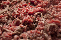 Minced Meat Cooking. Close Up of Raw Minced Meat Stock Image