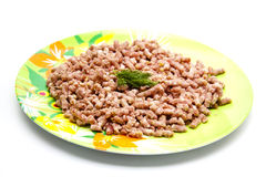 Minced meat with dill Stock Image