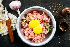 Minced meat. With raw egg and salt Royalty Free Stock Photography