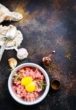 Minced meat. With raw egg and salt Royalty Free Stock Images