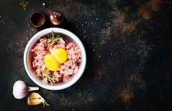 Minced meat. With raw egg and salt Royalty Free Stock Image