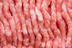 Minced meat of pork and beef Royalty Free Stock Photo