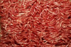 Minced meat raw and delicious royalty free stock images
