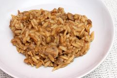 Minced meat with rice noodles Stock Images