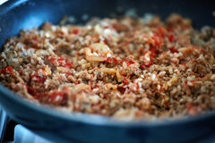 Minced meat with spices and veggies Stock Image