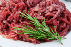 Minced meat. With thyme sprigs royalty free stock photo