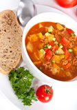 Minced meat and vegetable tomato soup Royalty Free Stock Image