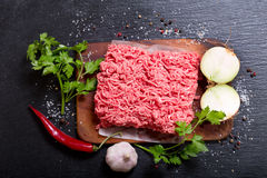 Minced meat with vegetables. On dark board Stock Images