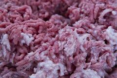 Minced pork and beef closeup Stock Photos