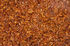 Minced spicy meat texture Stock Photos