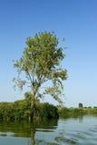 Mincio River Stock Images