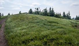 Mincol kulle i Mala Fatra berg i Slovakien Royaltyfri Bild