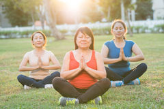 When mind, body and spirit alighted. Asian mature women meditating in lotus position royalty free stock images