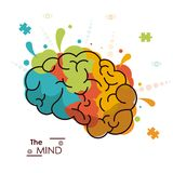 The mind colo brain creativity invention design. Vector illustration Royalty Free Stock Photo