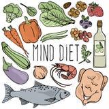 MIND DIET Healthy Nutrition Brain Vector Illustration Set. MIND DIET Healthy Nutrition Brain Food Organic Proper Vector Illustration Set for Medicine vector illustration