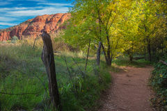 The Mind Expanding World of Sedona. View of the meadow and red rock in Sedona Arizona Stock Images