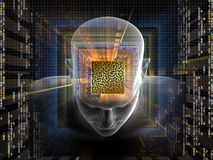 Mind Maze Royalty Free Stock Photo