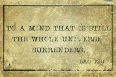 Free Mind Tzu Stock Images - 110116304