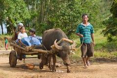 Mindanao que cultiva a la familia Imagenes de archivo