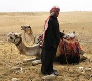 Minder egipcio del camello Imágenes de archivo libres de regalías