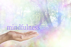 Mindfulness στη φύση στοκ φωτογραφίες με δικαίωμα ελεύθερης χρήσης