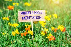 Mindfulness meditation signboard. Mindfulness meditation on small wooden signboard in the green grass with flowers and sun ray Stock Images