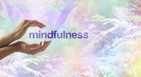 Mindfulness Meditation surrounded by surreal nature. Female cupped hands with the word MINDFULNESS floating between on a rainbow bokeh woodland background and Royalty Free Stock Photos
