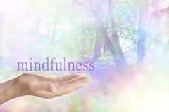 Mindfulness na natureza fotos de stock royalty free