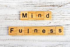 mindfulness som göras med träkvarterbegrepp Yoga lyckas, öppen för nya idéer Royaltyfri Fotografi