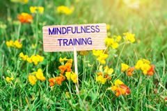 Mindfulness training signboard. Mindfulness training on small wooden signboard in the green grass with flowers and sun ray stock photo