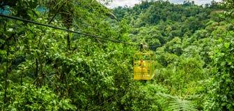 MINDO,厄瓜多尔- 2017年8月27日:有一条狗的未认出的人在穿过深谷, 152 m的Tarabita里面 免版税库存图片