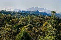 Mindo, Ecuador cloud forest. Beautiful view of Mindo in Ecuador cloud forest, South America stock photos