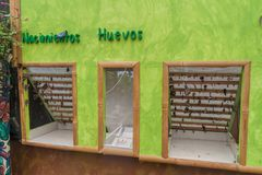 MINDO, ECUADOR - JUNE 27, 2015: Butterflies in a stage of pupa in Mariposario The Butterfly House in Mindo, Ecuad royalty free stock photos