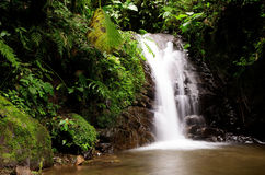 Mindo Waterfall Stock Photo