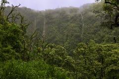 Mindre vattenfalltrådar fotografering för bildbyråer