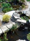 Mindre vattenträdgårddamm Royaltyfria Bilder