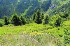 Mine géante en montagnes géantes Photographie stock libre de droits