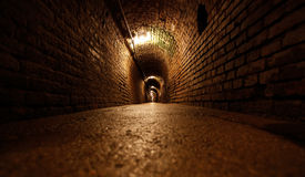 Mine tunnel Royalty Free Stock Photos