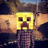Minecraft Στοκ Φωτογραφίες