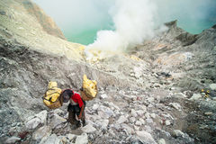 A miner carries a basket of sulphur out of Ijen crater. Stock Images