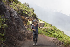 Miner carrying sulfur from crater Ijen, Java Stock Photo