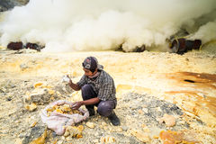 Miner collecting sulphur at Ijen Crater, Java, Indonesia Stock Photography