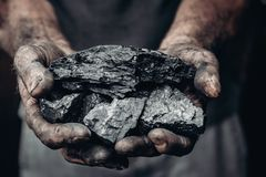 Free Miner Holds Coal, Palm Texture. Concept Mining, Black Stone. Stock Photography - 151334272